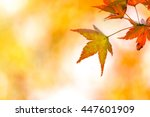 autumn background with free... | Shutterstock . vector #447601909