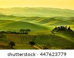 tuscany hills | Shutterstock . vector #447623779