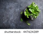 Fresh Mint Leaves In Mortar On...