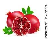 two whole ripe pomegranate... | Shutterstock .eps vector #447645778