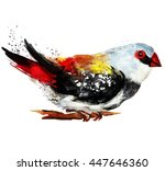 watercolor bright bird | Shutterstock . vector #447646360