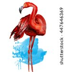 flamingo.watercolor | Shutterstock . vector #447646369