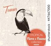 Exotic Tropical Birds Toucan...