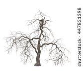 dead halloween tree isolated on ... | Shutterstock . vector #447821398