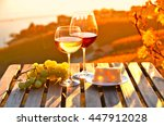 wine and grapes. lavaux ... | Shutterstock . vector #447912028
