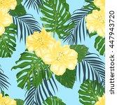 beautiful yellow hibiscus and... | Shutterstock .eps vector #447943720