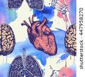 anatomical seamless pattern... | Shutterstock . vector #447958270