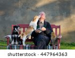 Senior Man With Dogs And Cat On ...