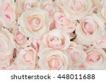 Stock photo pink rose for backgrounds 448011688