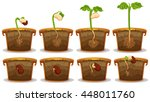 seed germination in claypot... | Shutterstock .eps vector #448011760