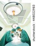 two veterinarian surgeons in... | Shutterstock . vector #448022983