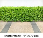 the green grass with white wall ... | Shutterstock . vector #448079188
