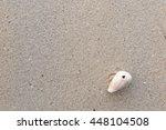 fossil shell on the sand beach | Shutterstock . vector #448104508