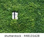 house is overgrown with ivy | Shutterstock . vector #448131628
