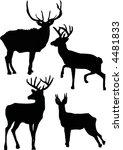 illustration with deer...   Shutterstock .eps vector #4481833