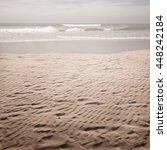 nature tropic background in... | Shutterstock . vector #448242184
