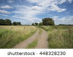 country road   Shutterstock . vector #448328230