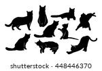 Stock vector vector image set of silhouettes of cats with different postures 448446370