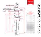 woman body measurement chart....   Shutterstock .eps vector #448473646