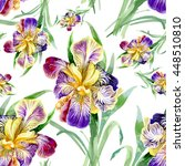Summer meadow iris flowers watercolor seamless pattern on white background