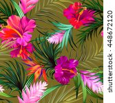 tropical flowers. seamless... | Shutterstock .eps vector #448672120
