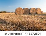 Harvested Field Of Wheat And...
