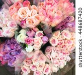 sweet color roses in flower... | Shutterstock . vector #448687420