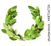 laurel wreath made of dried... | Shutterstock . vector #448716724