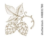 hops beer vector illustration ... | Shutterstock .eps vector #448831780