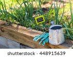 small organic vegetable garden...