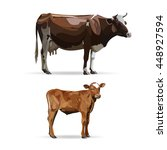 Cow Calf Brown  Vector