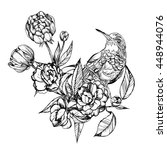 colibri.detailed drawing of a... | Shutterstock .eps vector #448944076