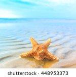 fish beach star  | Shutterstock . vector #448953373
