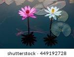 thale bua daeng park the twin... | Shutterstock . vector #449192728