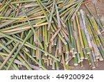 pile of cut bamboo put on floor. | Shutterstock . vector #449200924
