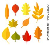 autumn leaves set  isolated on... | Shutterstock .eps vector #449263600