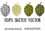 Hops Vector Visual Graphic...
