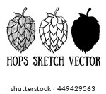 hops vector visual graphic... | Shutterstock .eps vector #449429563