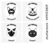 cat breeds  set  vector...   Shutterstock .eps vector #449453809