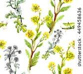 yellow garden flowers and... | Shutterstock . vector #449458636