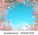 branch of pink cherry flower... | Shutterstock . vector #449467150