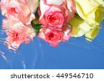 Beautiful Roses With Reflectio...