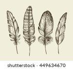hand drawn vintage bird... | Shutterstock .eps vector #449634670