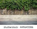 tree wall on beside the road....   Shutterstock . vector #449645386