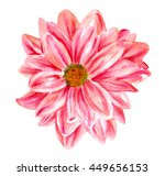 a watercolor drawing of a... | Shutterstock . vector #449656153