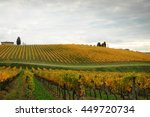 view of beautiful vineyards in... | Shutterstock . vector #449720734