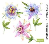 watercolor vector flower... | Shutterstock .eps vector #449895610
