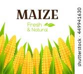 sweet corn banner. vector... | Shutterstock .eps vector #449941630