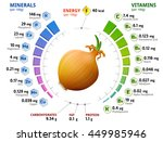 vitamins and minerals of common ... | Shutterstock . vector #449985946