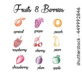fruits and berries. eco food.... | Shutterstock .eps vector #449992846